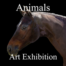 Animals Art Exhibition – October 2013 post image