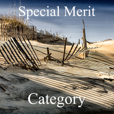 All Photography Art Exhibition – Special Merit post image