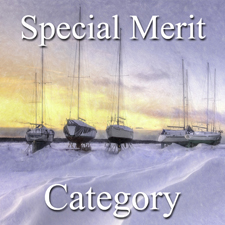 Seasons Art Exhibition – Special Merit Category post image